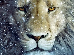 Aslan-Lion-3-The-Chronicles-of-Narnia-Wallpaper